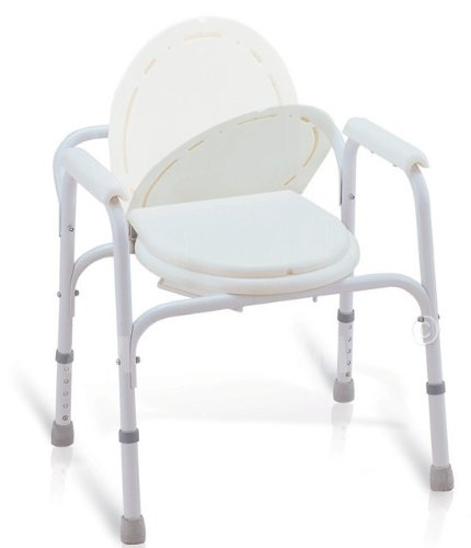 Bedside Commode Toilet Seat Safety Rails All In One